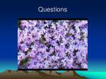 questions24
