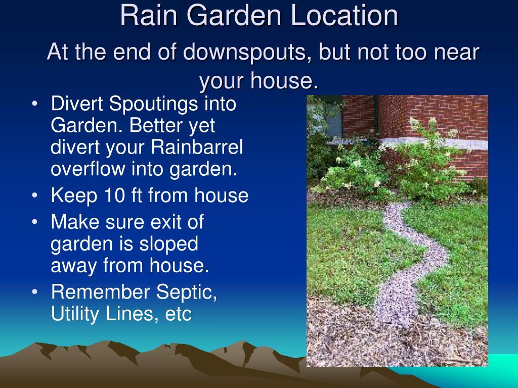 Rain Garden Location