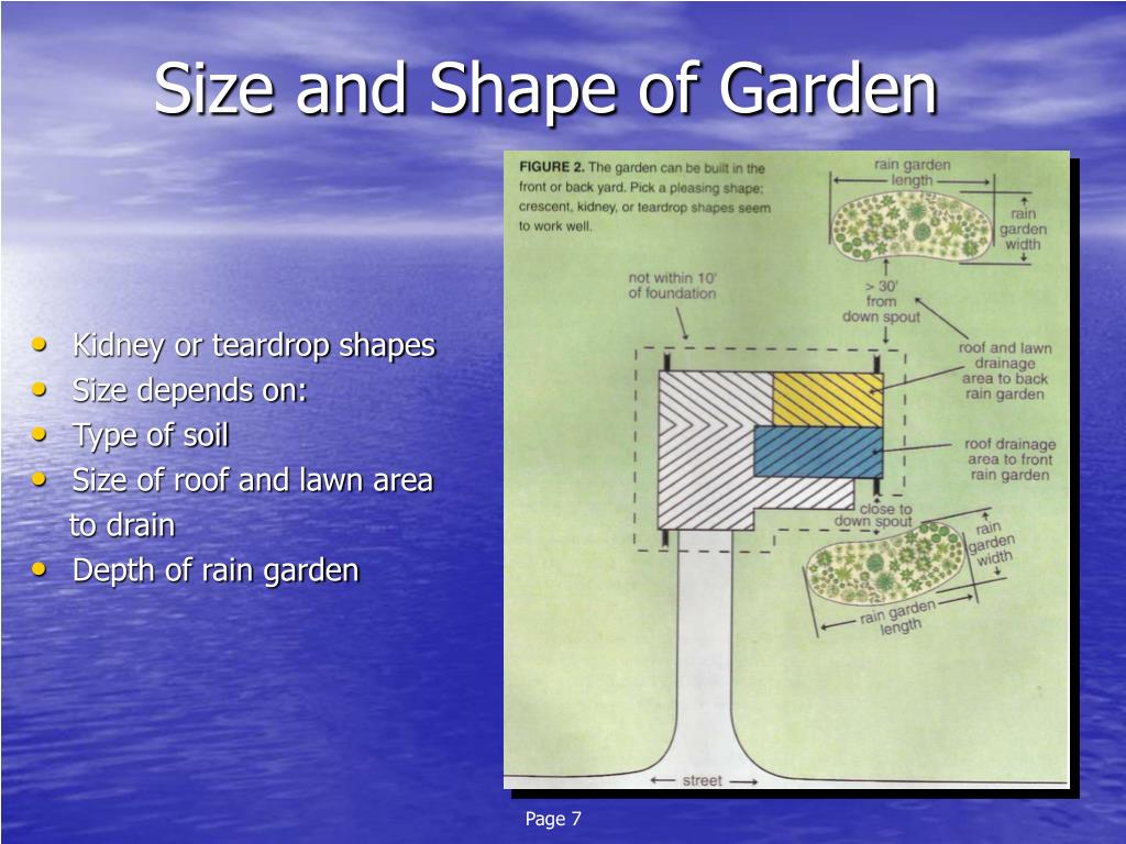 Size and Shape of Garden