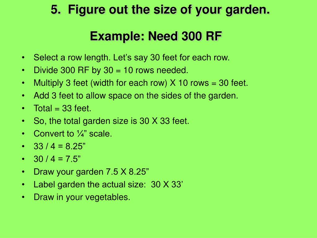 5.  Figure out the size of your garden.