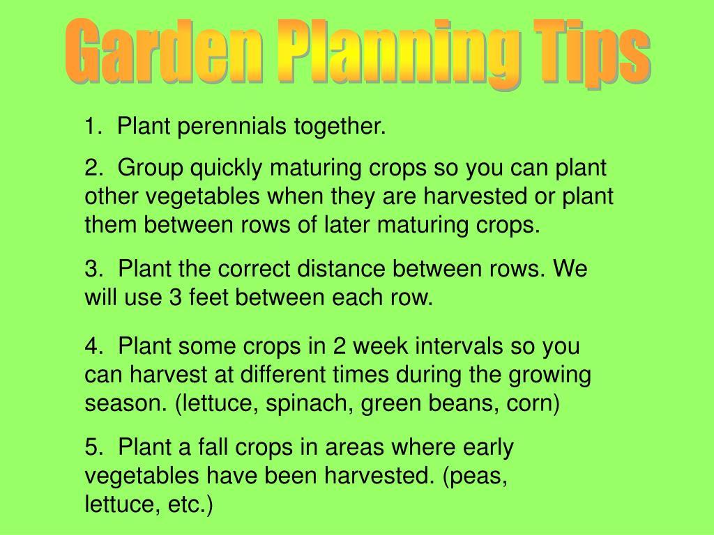 Garden Planning Tips
