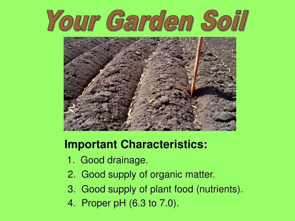 Your Garden Soil