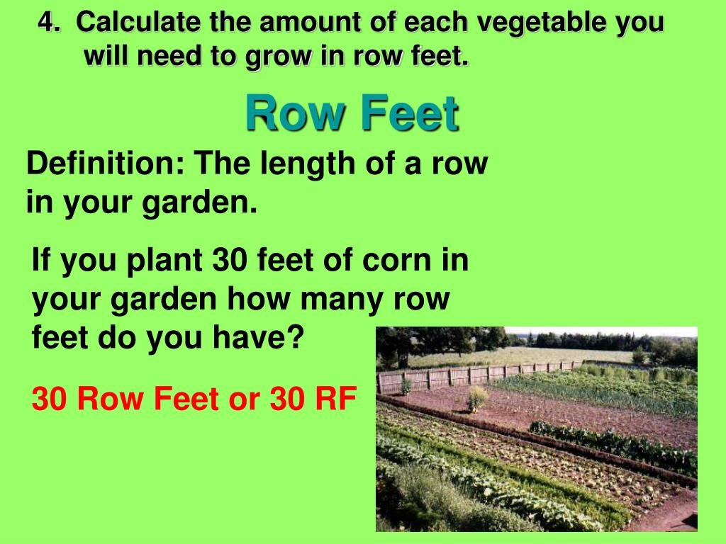 4.	 Calculate the amount of each vegetable you 	  will need to grow in row feet.