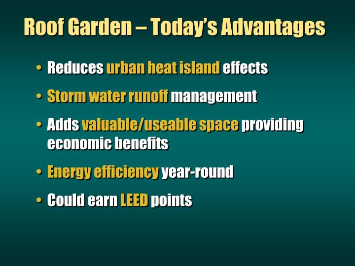 Roof Garden – Today's Advantages