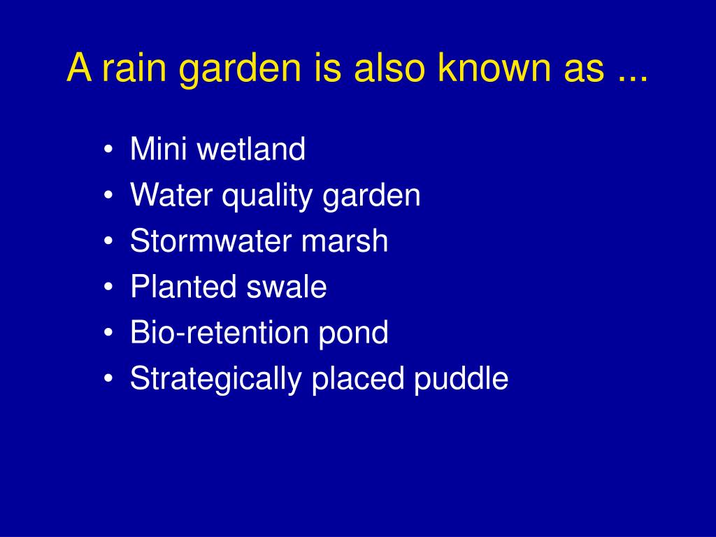 A rain garden is also known as ...