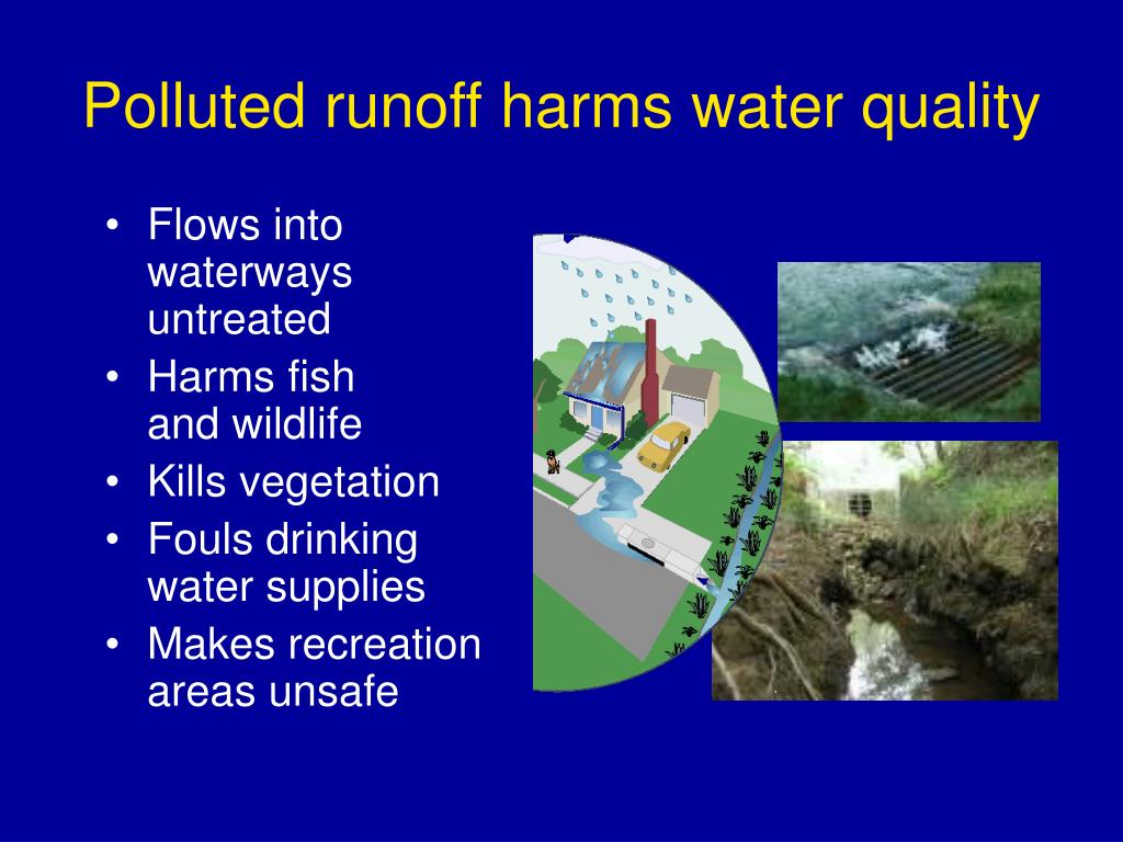 Polluted runoff harms water quality