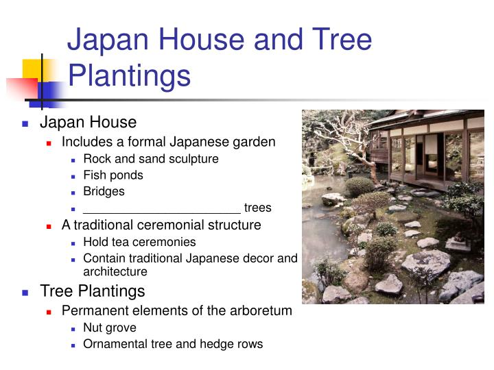 Japan house and tree plantings