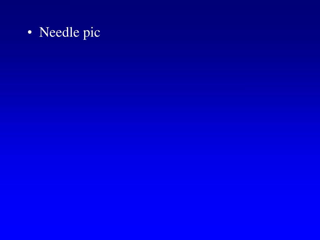 Needle pic