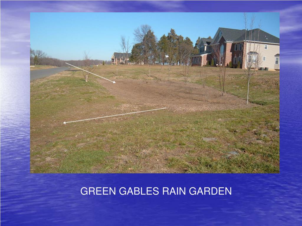 GREEN GABLES RAIN GARDEN