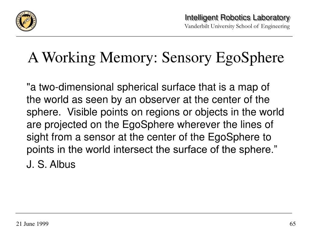 A Working Memory: Sensory EgoSphere