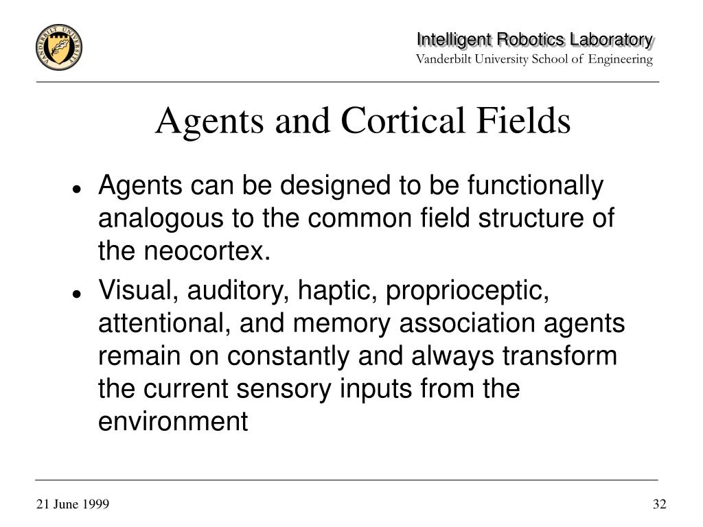 Agents and Cortical Fields