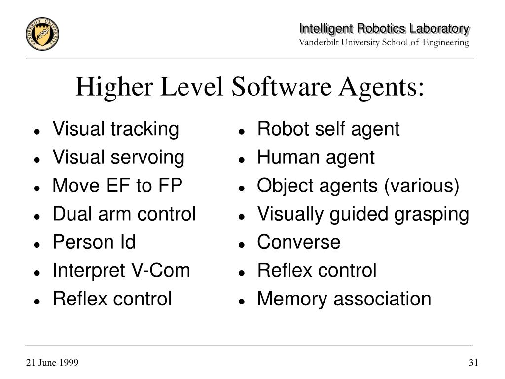 Higher Level Software Agents: