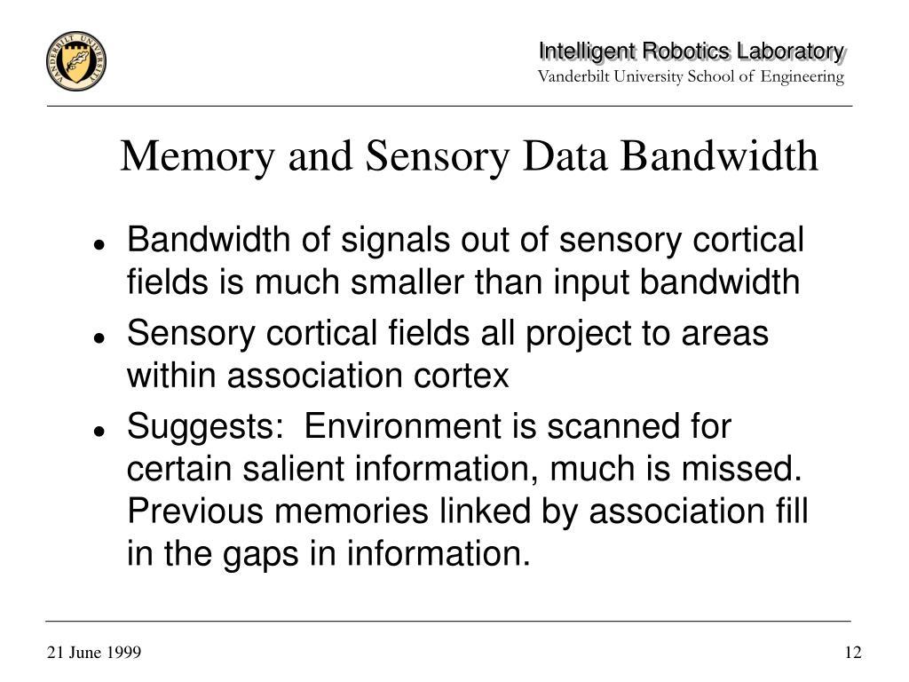 Memory and Sensory Data Bandwidth
