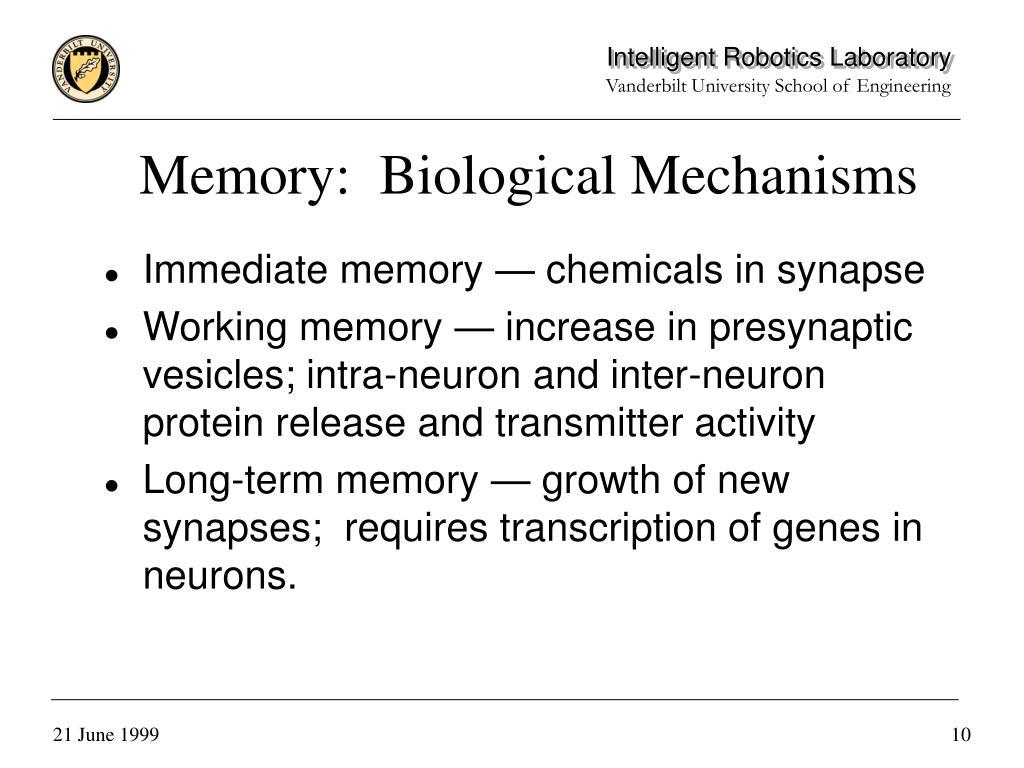 Memory:  Biological Mechanisms