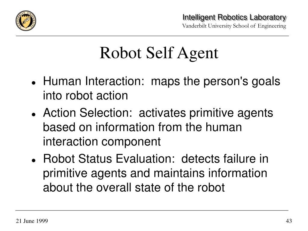 Robot Self Agent