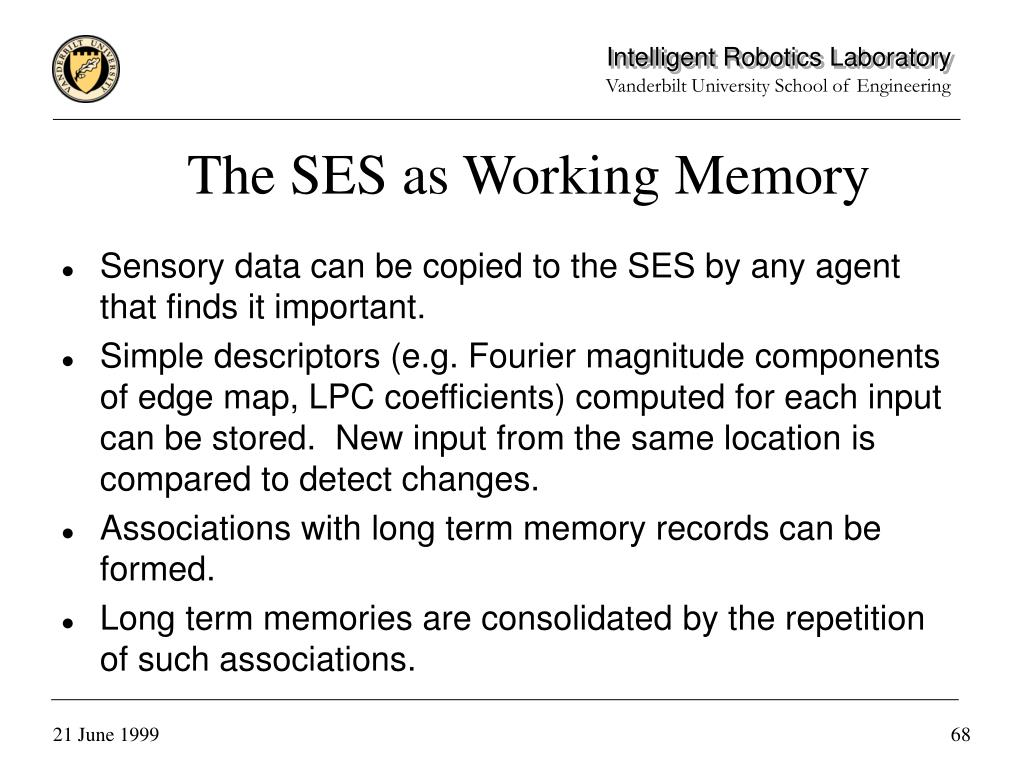The SES as Working Memory