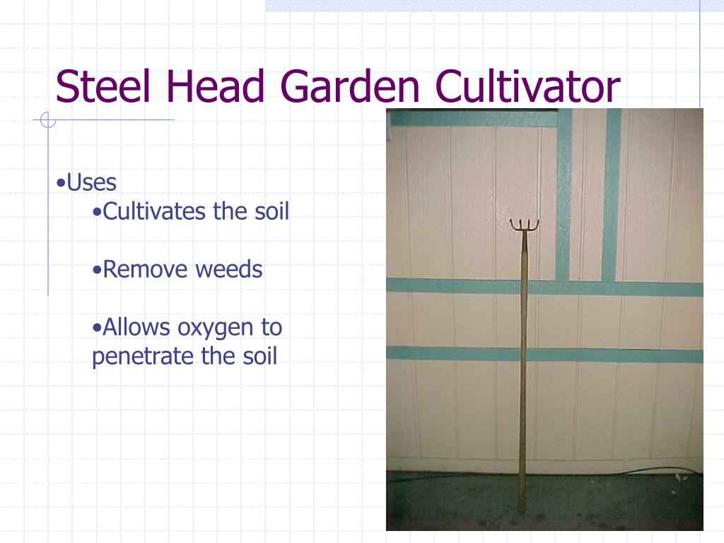 Steel Head Garden Cultivator