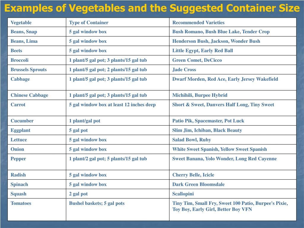 Examples of Vegetables and the Suggested Container Size