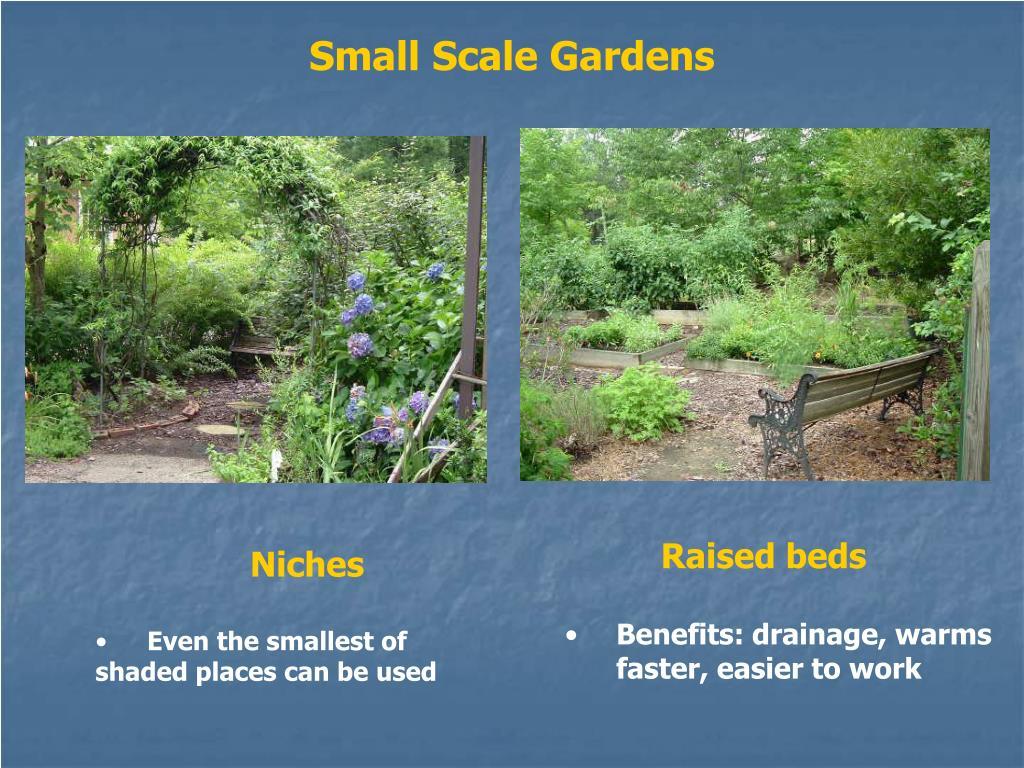 Small Scale Gardens