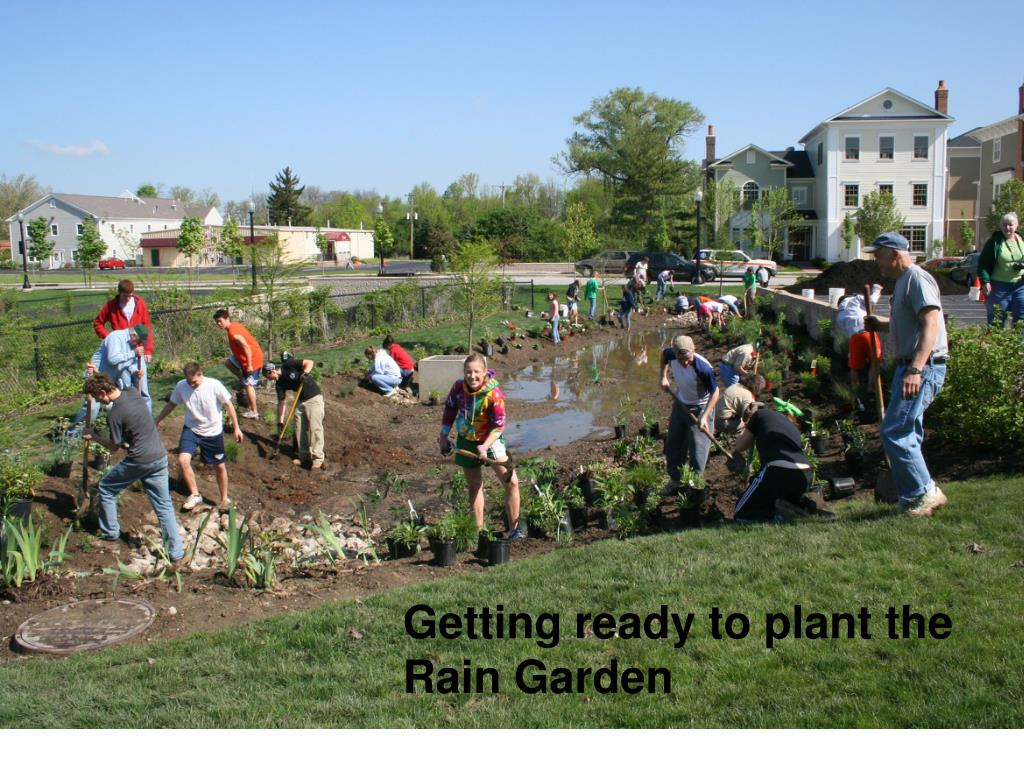 Getting ready to plant the Rain Garden