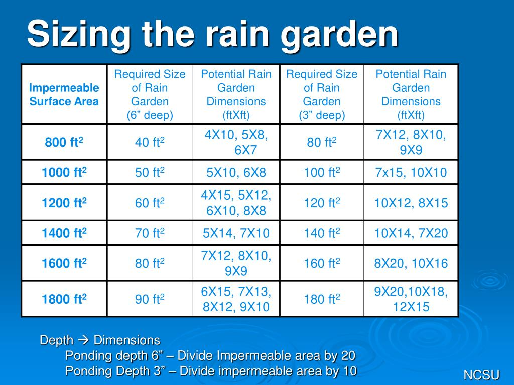 Sizing the rain garden