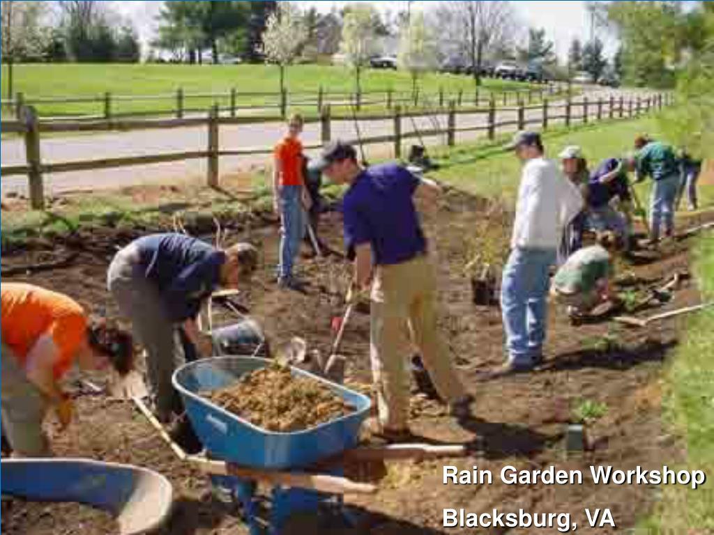 Rain Garden Workshop