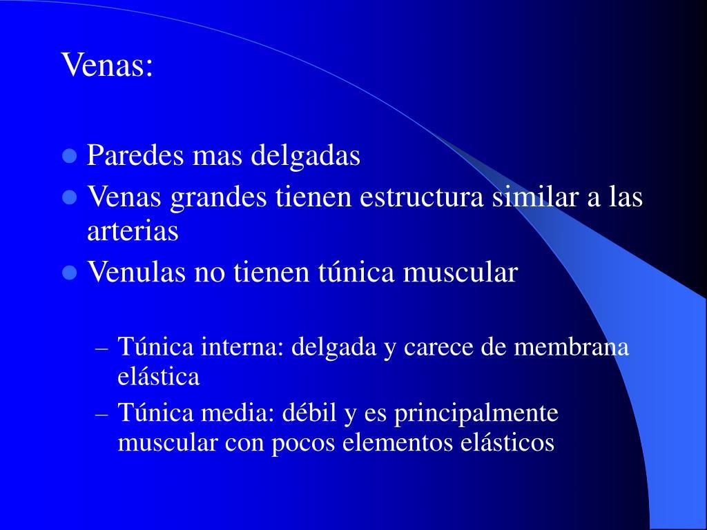 Venas: