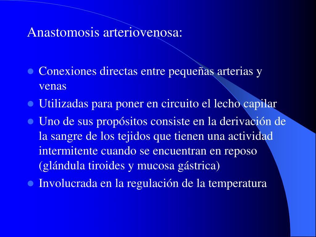 Anastomosis arteriovenosa: