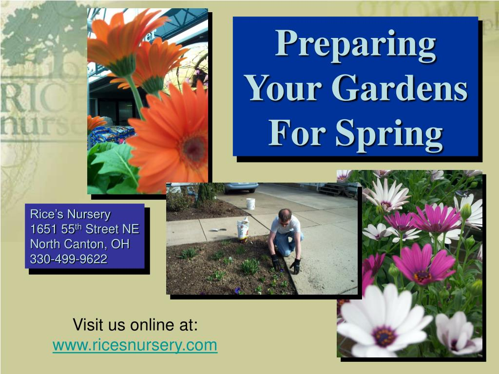 Preparing Your Gardens For Spring