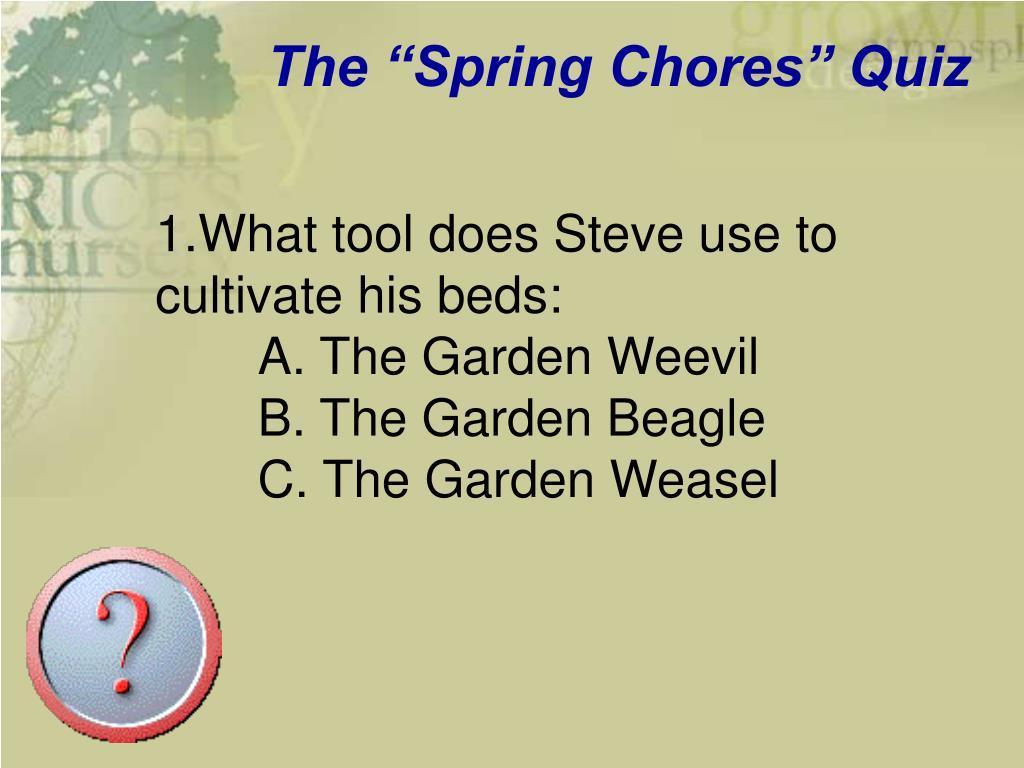 """The """"Spring Chores"""" Quiz"""