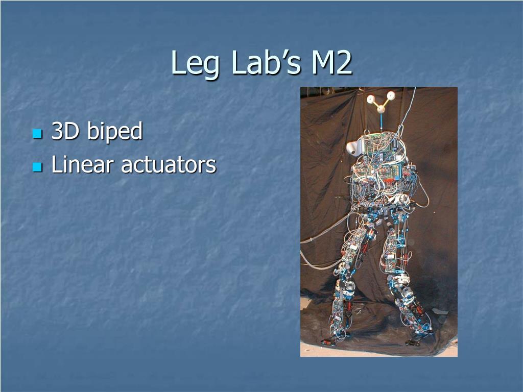 Leg Lab's M2