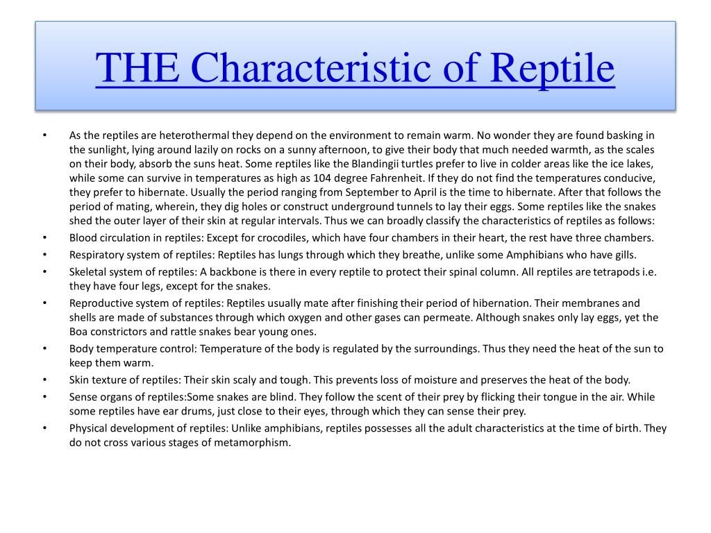 THE Characteristic of Reptile