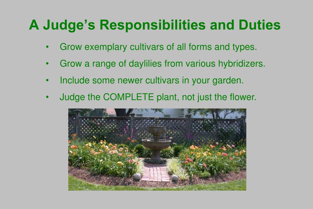 A Judge's Responsibilities and Duties