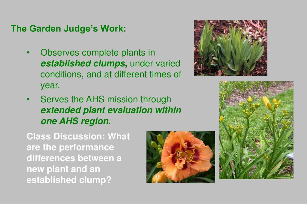 The Garden Judge's Work:
