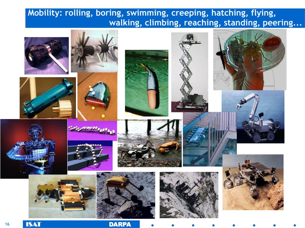 Mobility: rolling, boring, swimming, creeping, hatching, flying,