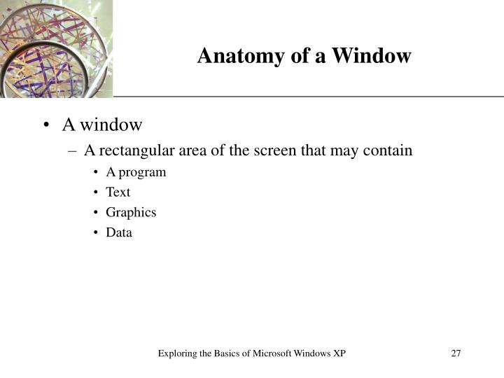 Anatomy of a Window