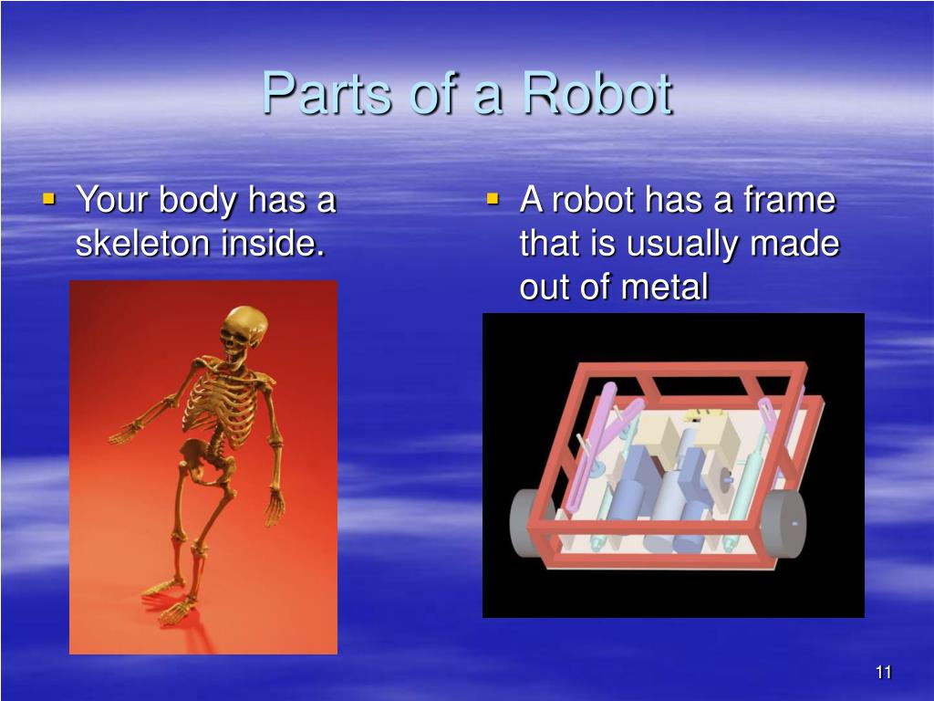 Your body has a skeleton inside.