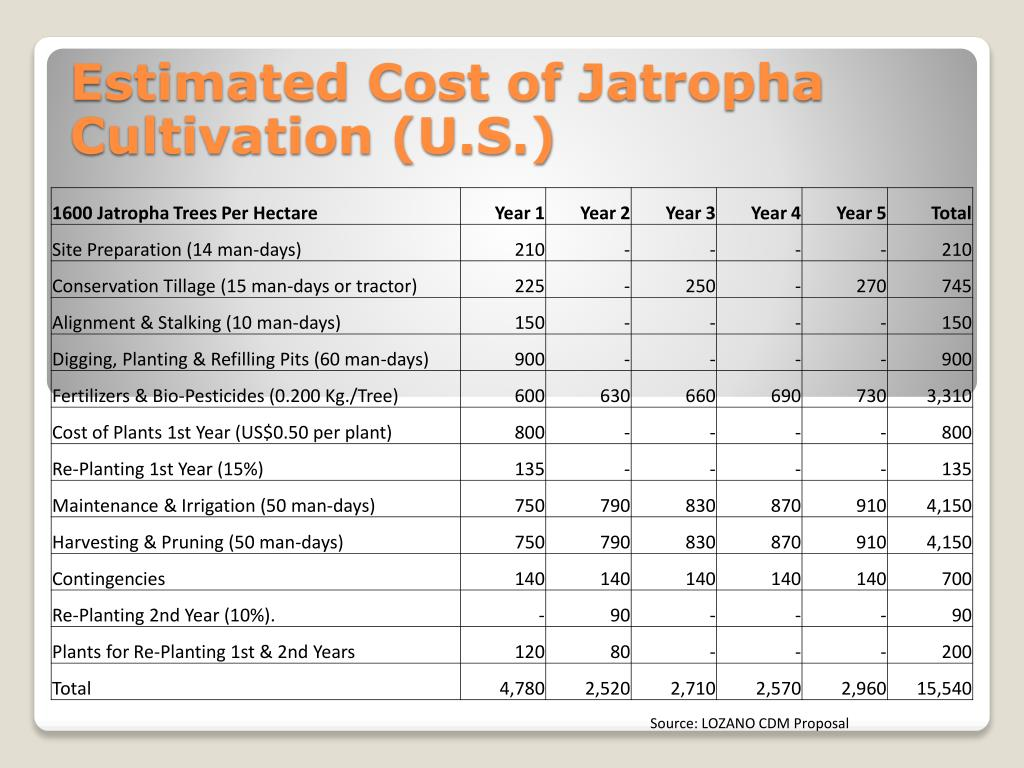 Estimated Cost of