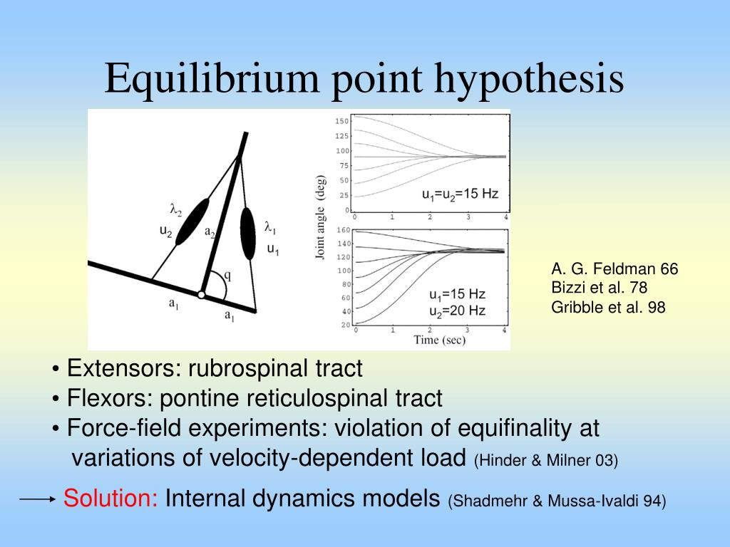 Equilibrium point hypothesis