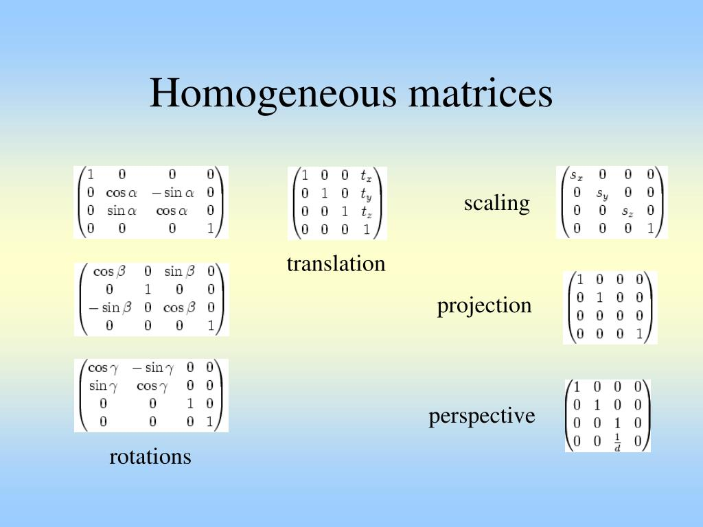 Homogeneous matrices