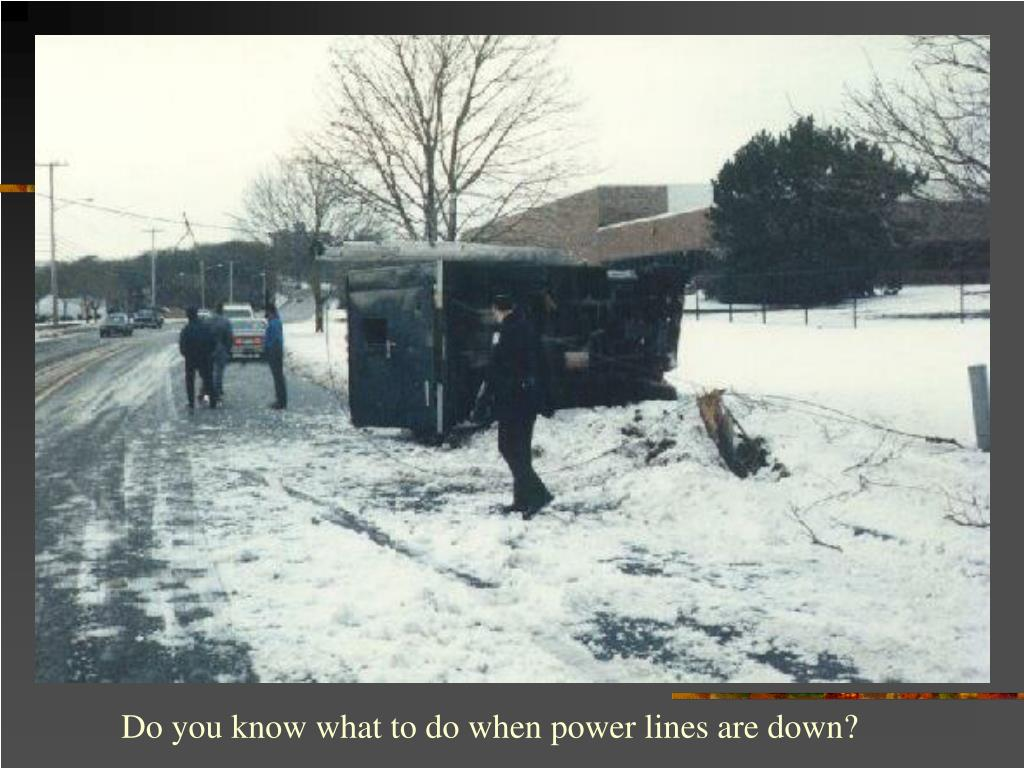 Do you know what to do when power lines are down?