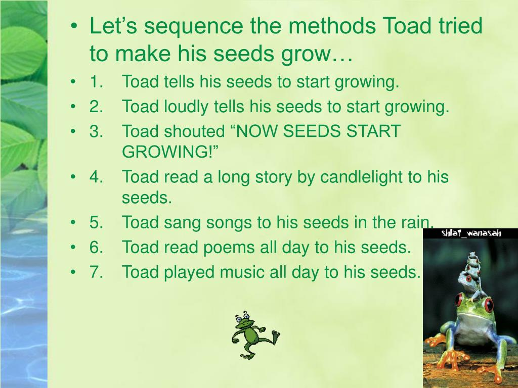 Let's sequence the methods Toad tried to make his seeds grow…
