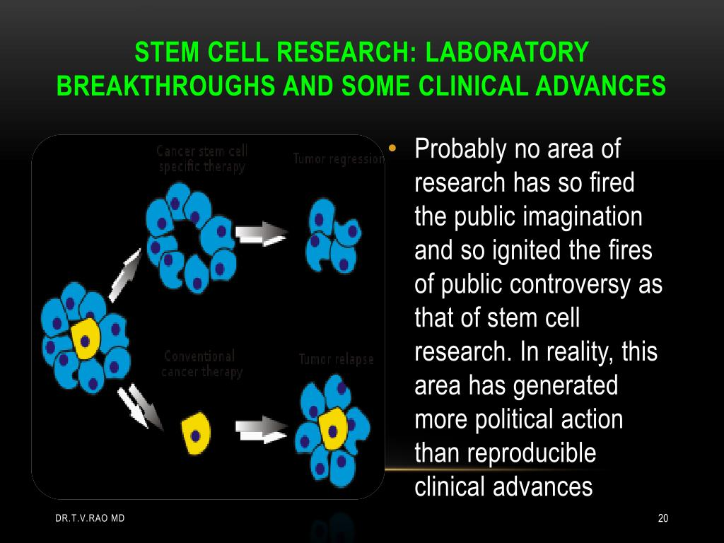 the medical breakthrough of stem cell research essay I will discuss the pros and cons of stem cell research i will discuss the positive outcomes associated with stem cell research from a medical aspect and the negative.