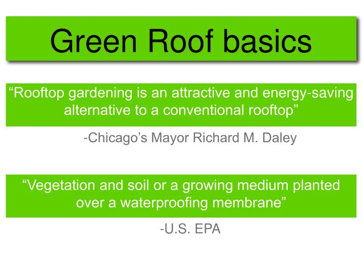 Green roof basics