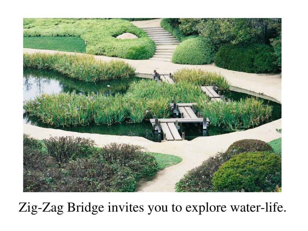 Zig-Zag Bridge invites you to explore water-life.
