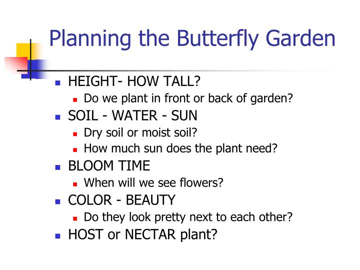 Planning the butterfly garden
