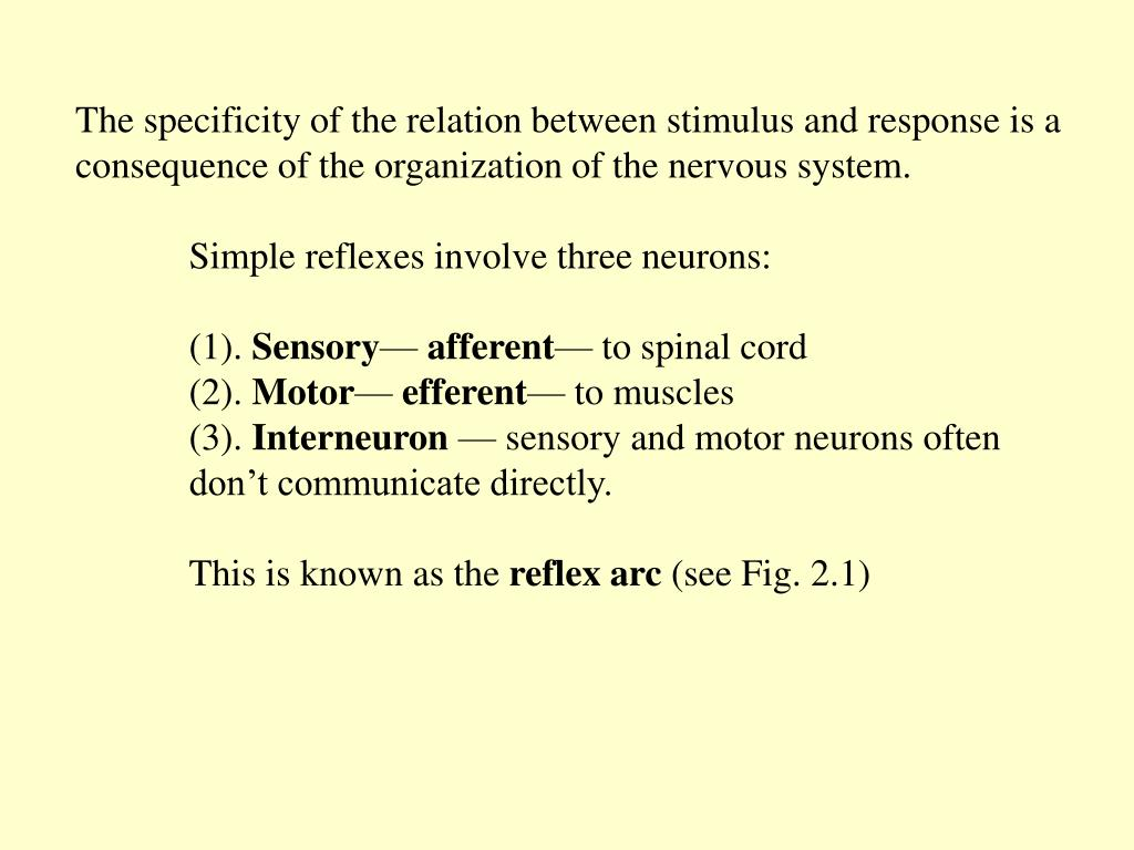 The specificity of the relation between stimulus and response is a