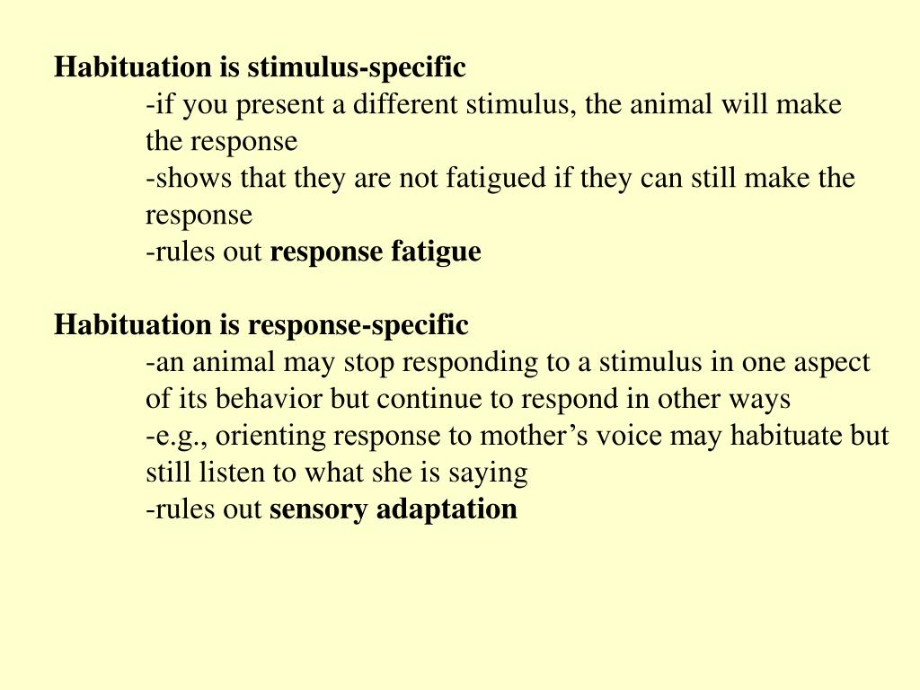 Habituation is stimulus-specific