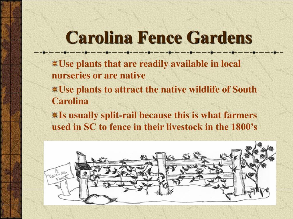 Carolina Fence Gardens