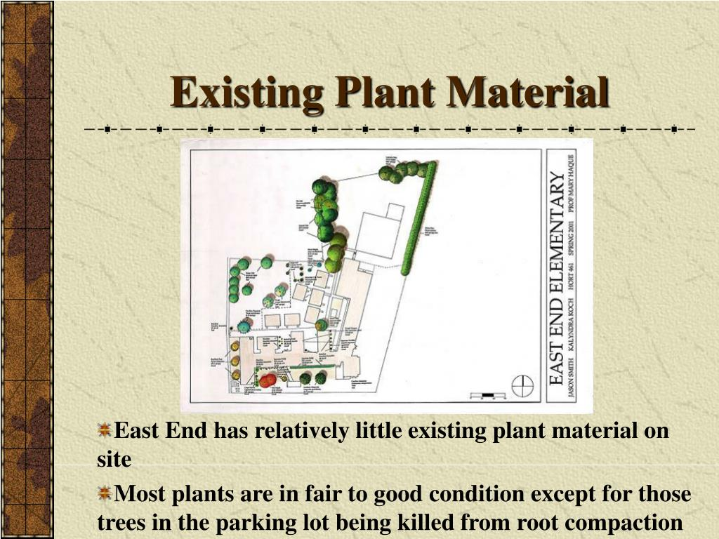 Existing Plant Material
